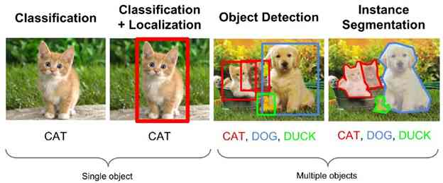 Cats and Dogs Machine Learning Classification
