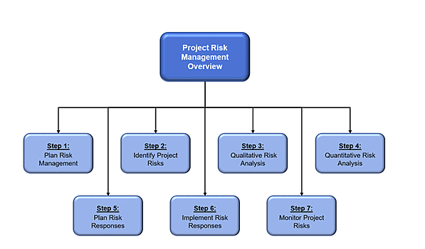 Project Risk Management Overview