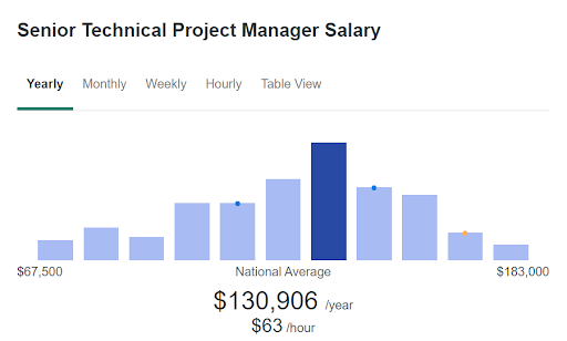 Senior Technical Project Manager Salary