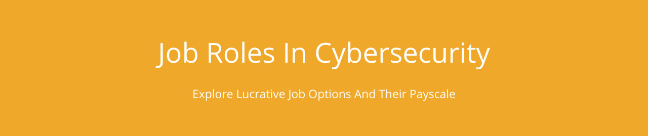 Job roles in Cyber Security