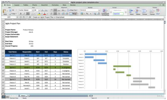 Agile project plan example